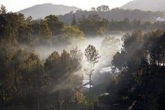 Het zonlicht doordringt de wolken om tot humeurige verlichting op een visserijpijler bij schemer te leiden royalty-vrije stock fotografie