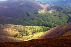 Het zonlicht maakt met de ochtendhemel zijn manier aan de voet van de berg in het boslandschap Royalty-vrije Stock Afbeeldingen
