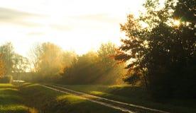 Het zonlicht van de ochtend Stock Afbeelding