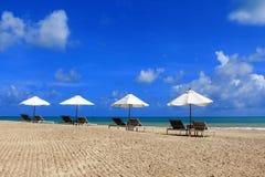 Het zonnebaden van Bedden met Witte Paraplu Stock Afbeeldingen