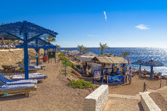 Het zonnebaden van mensen op het strand van het Rode Overzees Royalty-vrije Stock Afbeelding