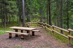 het zonnige de zomer voetpad van de wandelingssleep in het hout voor toeristen royalty-vrije stock foto's