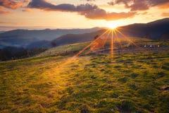 Het zonnige landelijke landschap van ochtendbergen Stock Afbeelding