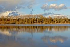 Het zonnige landschap van het de wintermoerasland met naakte bomen en cumulus het cloudsreflecting in het water royalty-vrije stock afbeelding