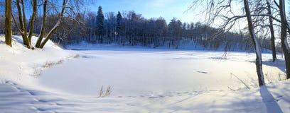 Het zonnige panorama van bevroren vijver in het park surrouded door de snow-covered bomen stock foto's