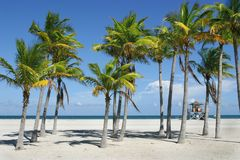 Het zonnige Strand van Miami Stock Foto