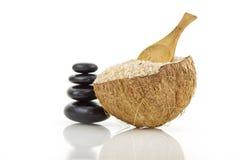 Het zout van de kokosnoot Royalty-vrije Stock Afbeelding