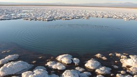 Het zoute meer van de Woestijn van Atacama, Chil royalty-vrije stock afbeeldingen