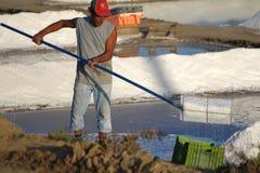 Het zoute oogsten stock foto