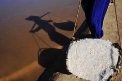 Het zoute oogsten Stock Foto's