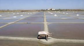 Het zoute Oogsten in Frankrijk Royalty-vrije Stock Foto's