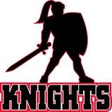 Het zwaard van het het silhouetschild van de ridder Stock Fotografie