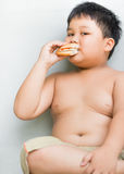Het zwaarlijvige vette jongenskind eet kippenhamburger Royalty-vrije Stock Foto's