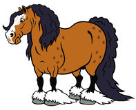 Het zware paard van het beeldverhaal Stock Foto