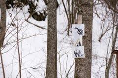 Het zware sneeuwonweer behandelde lege bank in park royalty-vrije stock foto