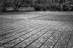 Het zwart-wit rooster van de Staalgrond Roestvrij staaltextuur, achtergrond voor website of mobiele apparaten Royalty-vrije Stock Foto