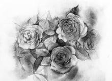 Het zwart-witte rozenwaterverf schilderen Stock Afbeelding