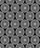 Het zwart-witte symmetrische ronde madeliefje bloeit naadloos patroon, vector royalty-vrije illustratie