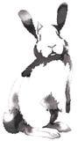 Het zwart-witte zwart-wit schilderen met water en de inkt trekken konijnillustratie Royalty-vrije Stock Foto's