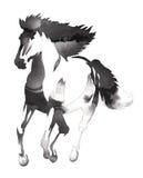 Het zwart-witte zwart-wit schilderen met water en de inkt trekken paardillustratie Royalty-vrije Stock Foto's