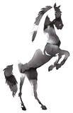 Het zwart-witte zwart-wit schilderen met water en de inkt trekken paardillustratie Royalty-vrije Stock Fotografie