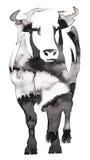 Het zwart-witte zwart-wit schilderen met water en de inkt trekken stierenillustratie Royalty-vrije Stock Foto