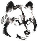 Het zwart-witte zwart-wit schilderen met water en de inkt trekken wolfsillustratie Royalty-vrije Stock Fotografie