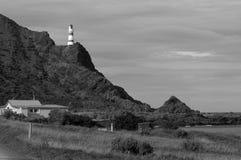 Het zwarte & Witte Lichte huis van Palliser van de Kaap Royalty-vrije Stock Afbeeldingen