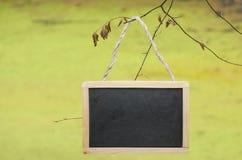 Het zwarte schoolbord hangen van een boom Royalty-vrije Stock Foto