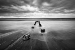 Het Zwarte Wit van Charleston South Carolina Scenic Seascape van het dwaasheidsstrand Stock Afbeeldingen