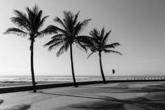 Het Zwarte Wit van de strandpromenade Stock Afbeeldingen