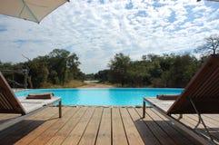 Het Zwembad van de safari Royalty-vrije Stock Afbeelding