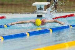 Het zwemmen Butterfy Royalty-vrije Stock Fotografie