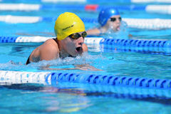 Het zwemmen de concurrentie Stock Foto
