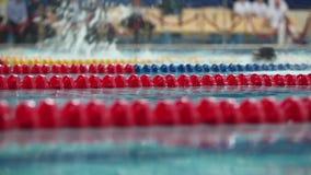 Het zwemmen de concurrentiestijl van mening van de vlinder de mannelijke Lage hoek naast stock footage