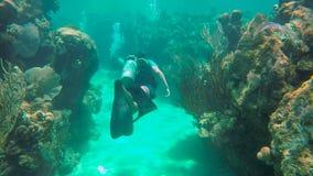 Het zwemmen door een tunnel terwijl het duiken in Utila stock footage