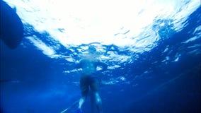 Het zwemmen en vrij duiken/het snorkelen met tonijn stock videobeelden