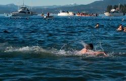 Het zwemmen in het nieuwe jaar Stock Afbeeldingen