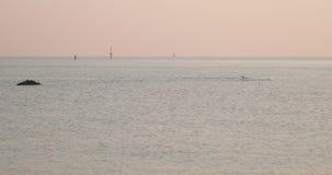 Het zwemmen overzeese dageraad stock videobeelden