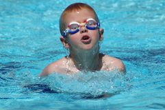 Het zwemmen van de jongen Royalty-vrije Stock Foto's