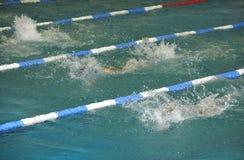 Het zwemmen van de rugslag Stock Fotografie
