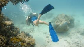 Het zwemmen voorbij de koraalriffen stock video