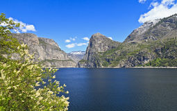 Hetchy Hetchy Spring Royalty Free Stock Images