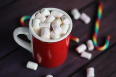 Hete Cacao met Heemst en Suikergoedriet Royalty-vrije Stock Afbeeldingen