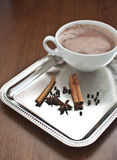 Hete cacao met kaneel Stock Foto