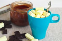 Hete Chocolade Stock Afbeelding