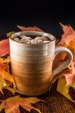 Hete Chocolade in de herfst met marshmellows Royalty-vrije Stock Afbeelding