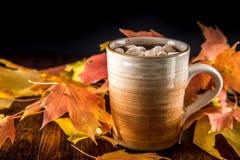 Hete Chocolade in de herfst met marshmellows Stock Foto