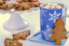 Hete chocolade en gemberkoekjes Stock Fotografie