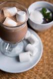 Hete Chocolade met Heemst Royalty-vrije Stock Afbeelding
